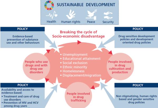 Source World Drug Report 2020 Presentation Booklet 1